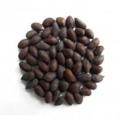 Cotton Seeds (21)