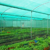 Agro Shed Nets (6)