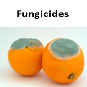 Fungicides (27)
