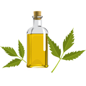 Organic Neem Products (6)
