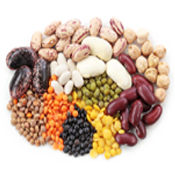 Pulses & Beans (6)