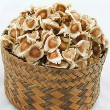 Moringa Seeds - Superior Quality