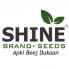 Shine Brand Seed (1)