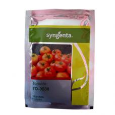 syngenta Tomato (TO-3038)