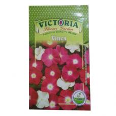 Victoria Vinca Flower Seed