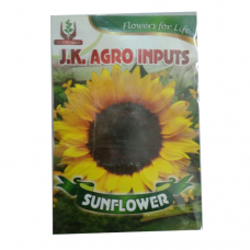Sunflower Flower Seed