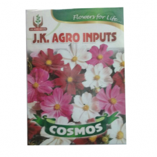Cosmos Flower Seed
