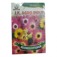 Mesembryanthemum Flower Seed