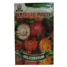 Helichrysum Flower Seed