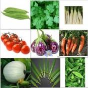 kitchen Garden Seeds (10)