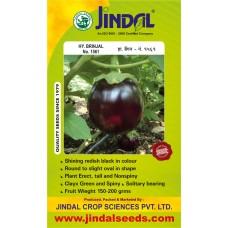 Jindal Brinjal Hybrid Seeds(baingan Seeds)-No.1561 -10GM