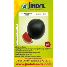 Jindal Watermelon Hybrid Seeds(Tarabooj Seeds) Jumbo-10GM