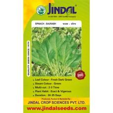 Jindal Spinach Seeds(Palak Seeds) Saurabh  -500GM