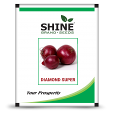 Onion - Diamond Super (500 GM )