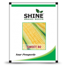 Sweet Corn - SWEETY 80
